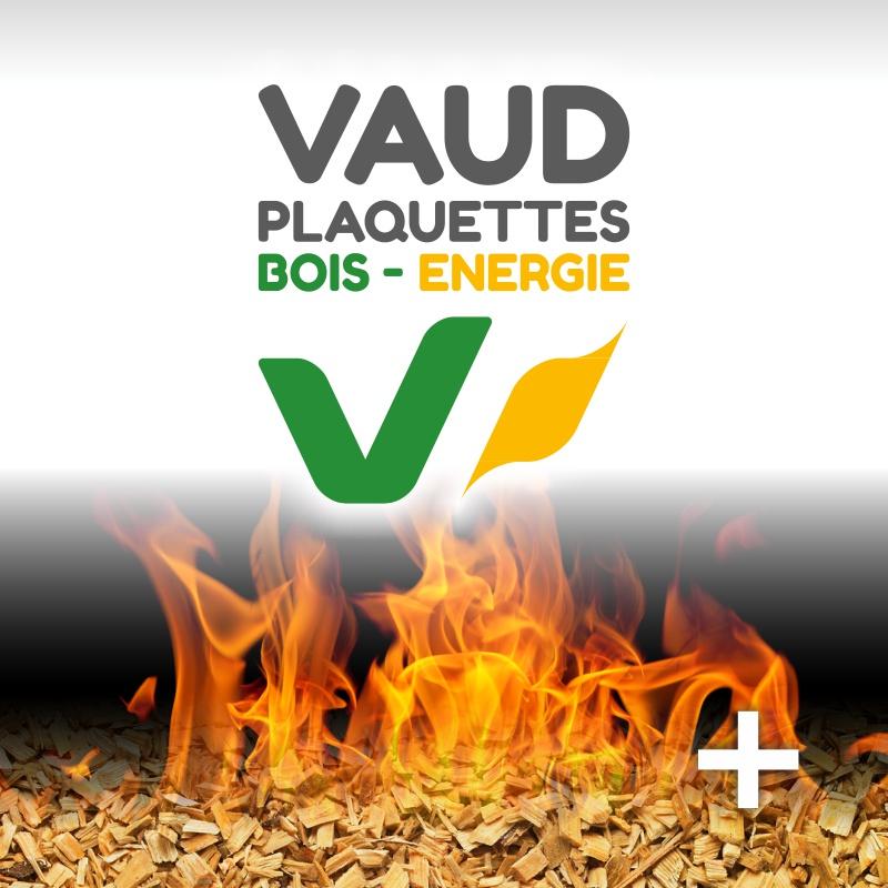 LA FORESTI u00c8RE Société coopérative de propriétaires et exploitants forestiers  # Bois Negoce Energie